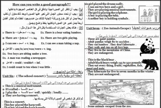 أقوى ورقتين لحل سؤال البراجراف للصف السادس الابتدائي  0310
