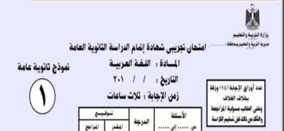 """مستشار اللغة العربية"""" ينشر خلاصة بوكليت امتحان الثانوية العامة  9938"""
