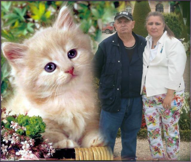 Montage de ma famille - Page 4 1d3vz-24
