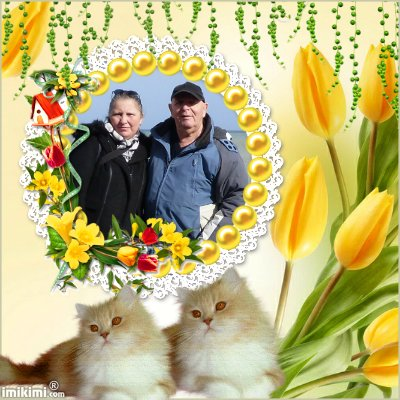 Montage de ma famille - Page 4 2zxda-10