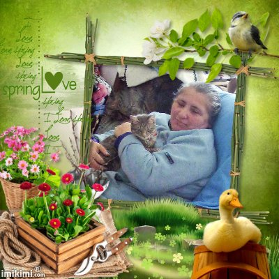 Montage de ma famille - Page 4 2zxda-80