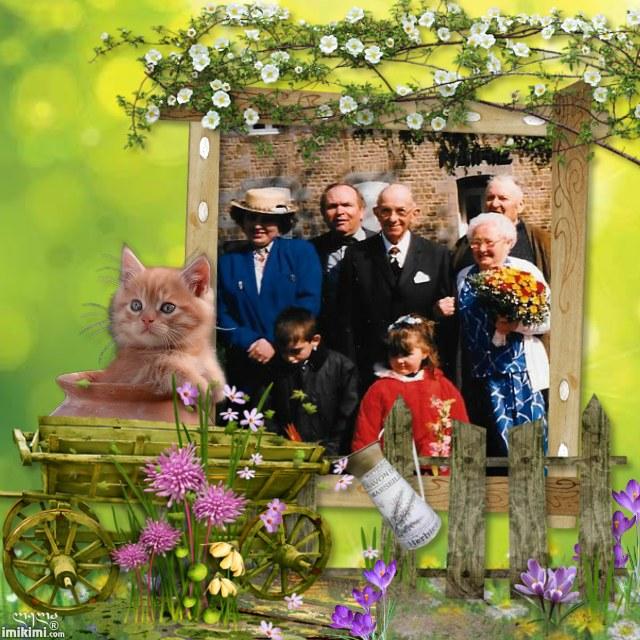 Montage de ma famille - Page 5 2zxda142