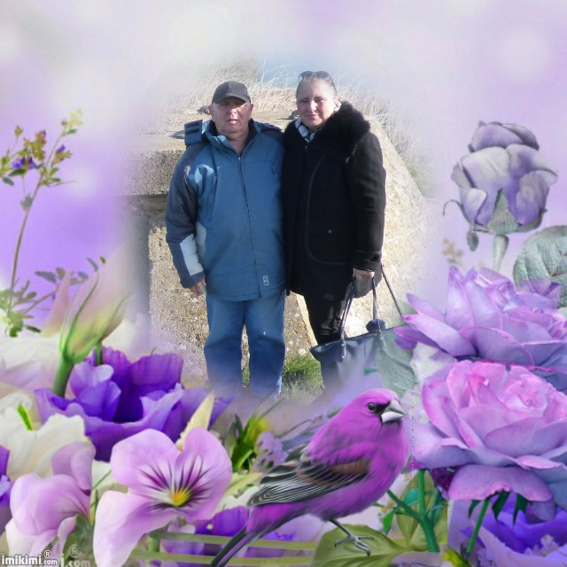 Montage de ma famille - Page 5 2zxda182