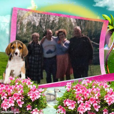 Montage de ma famille - Page 5 2zxda216
