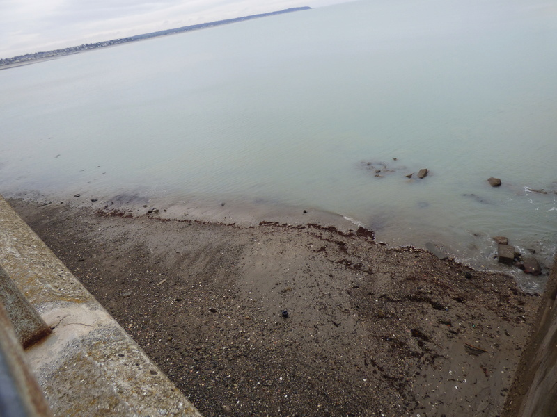 Sortie à la plage de carolles et à granville - 23 mars 2017 P1070862