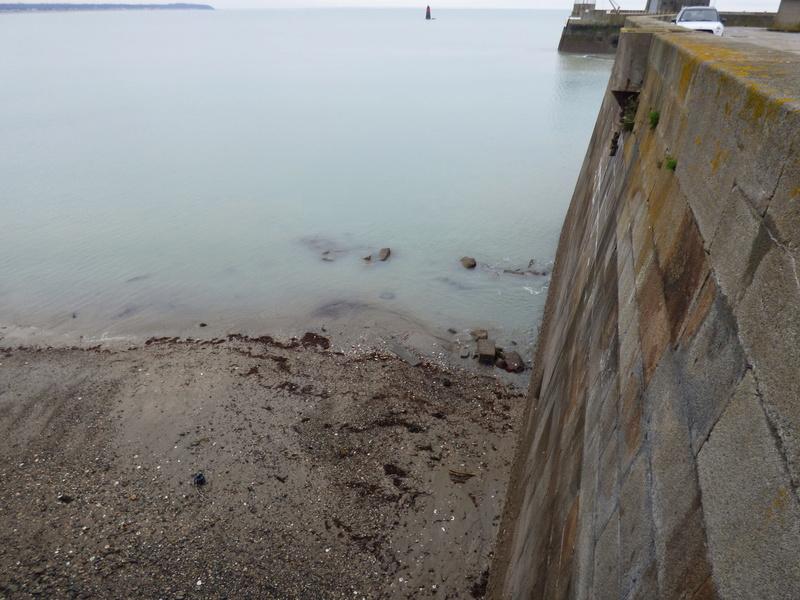 Sortie à la plage de carolles et à granville - 23 mars 2017 P1070863