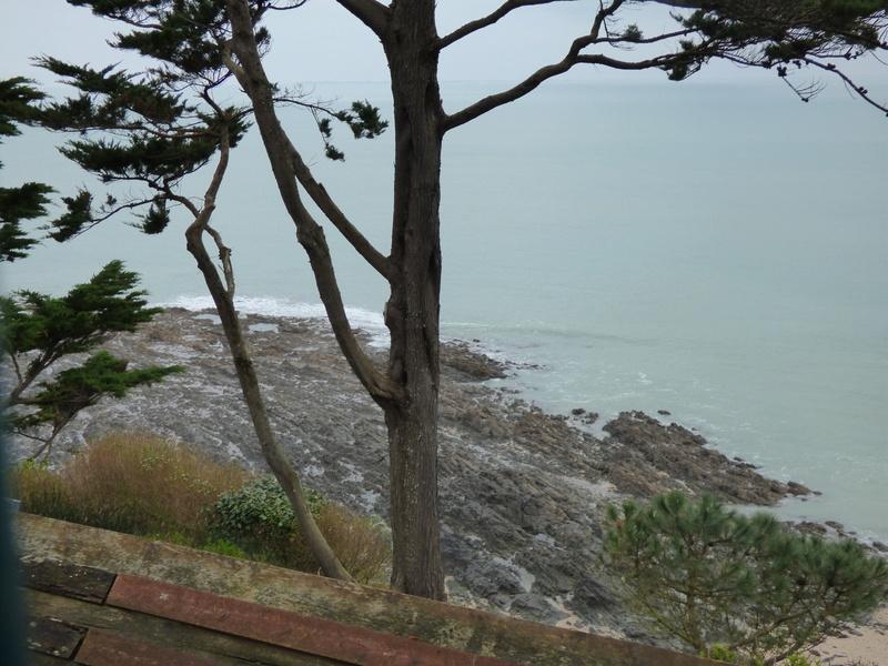 Sortie à la plage de carolles et à granville - 23 mars 2017 P1070972