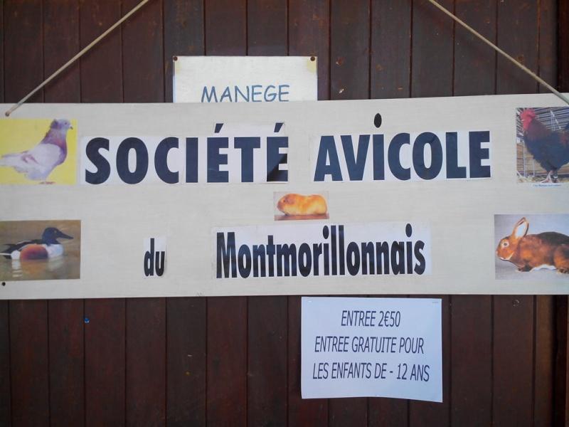 Exposition mars 2014 de Montmorillon (86) Img_2119