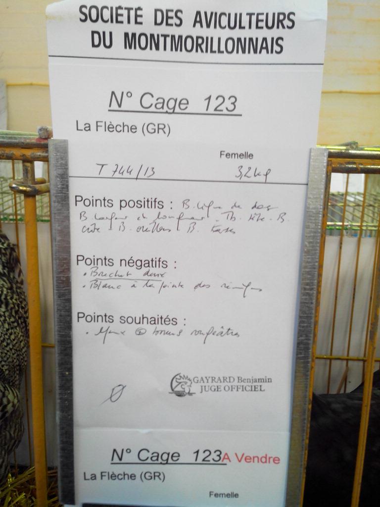 2014 - Exposition mars 2014 de Montmorillon (86) Img_2123