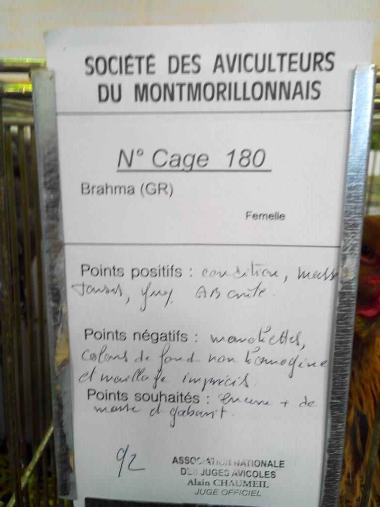 2014 - Exposition mars 2014 de Montmorillon (86) Img_2167