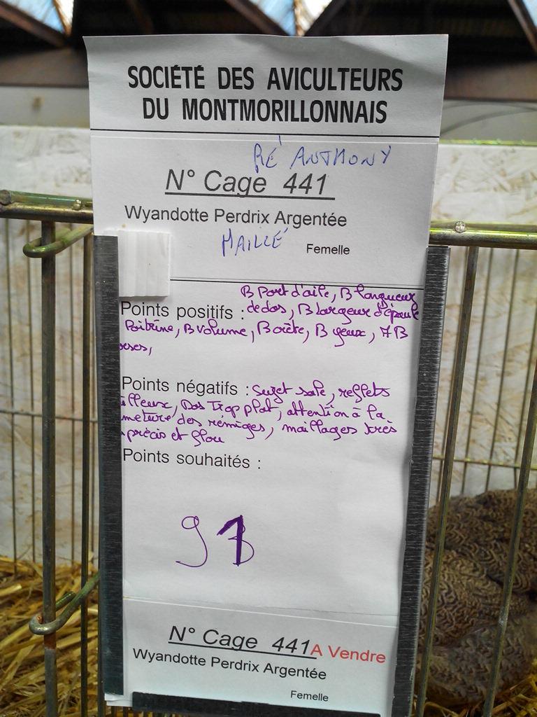 2014 - Exposition mars 2014 de Montmorillon (86) Img_2183