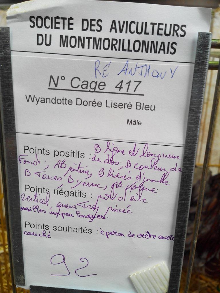 2014 - Exposition mars 2014 de Montmorillon (86) Img_2200