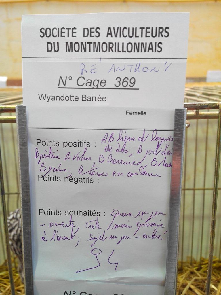 2014 - Exposition mars 2014 de Montmorillon (86) Img_2208