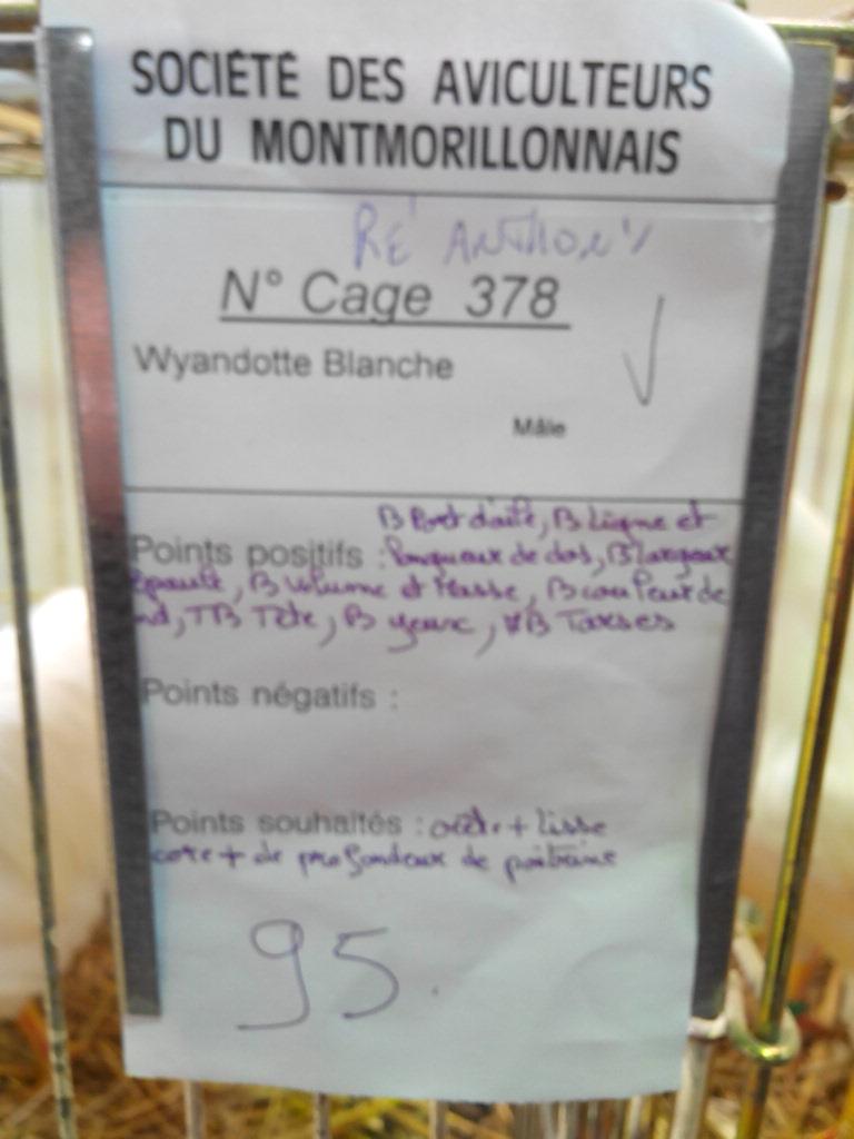 2014 - Exposition mars 2014 de Montmorillon (86) Img_2215