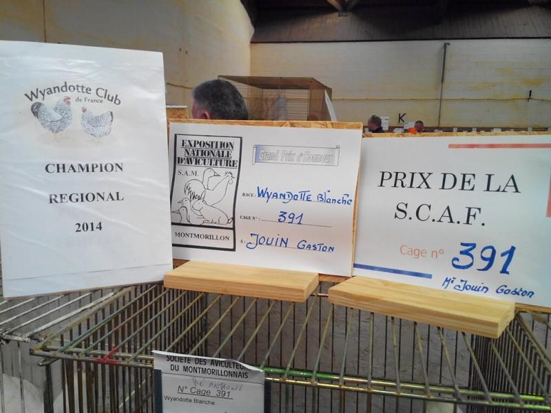 2014 - Exposition mars 2014 de Montmorillon (86) Img_2218