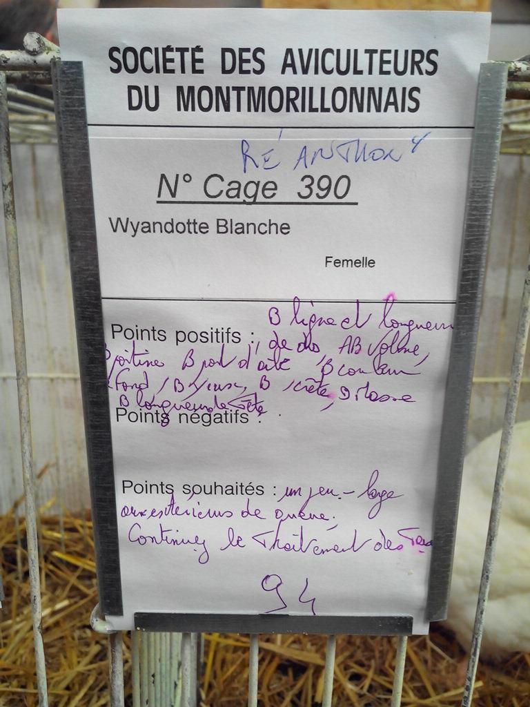 2014 - Exposition mars 2014 de Montmorillon (86) Img_2223