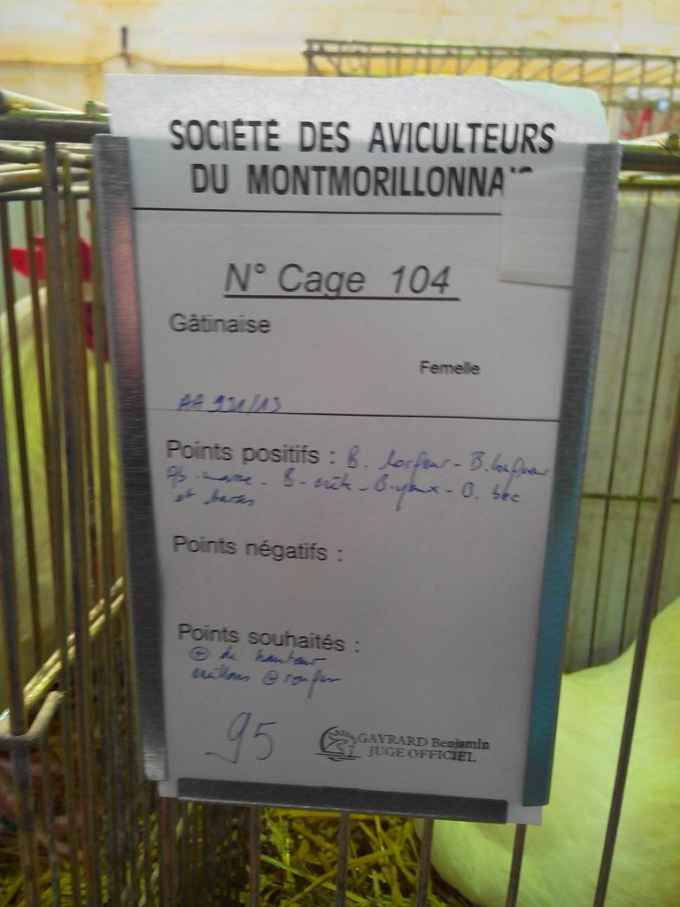 2014 - Exposition mars 2014 de Montmorillon (86) Img_2244