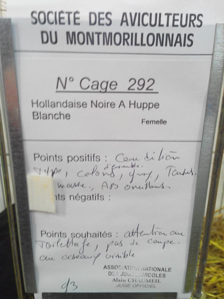 2014 - Exposition mars 2014 de Montmorillon (86) Img_2301