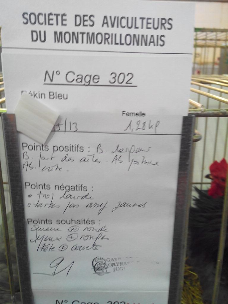 2014 - Exposition mars 2014 de Montmorillon (86) Img_2310