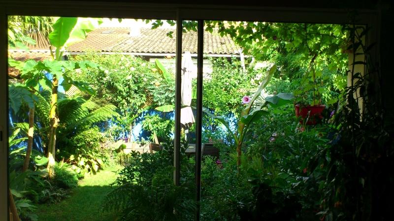 Un petit tour dans mon jardin Dsc_4814