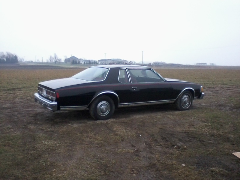 FOR SALE 1979 CAPRICE 12031311