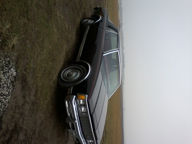 FOR SALE 1979 CAPRICE 12031320