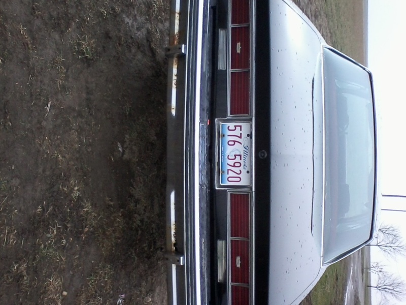 FOR SALE 1979 CAPRICE 12031321