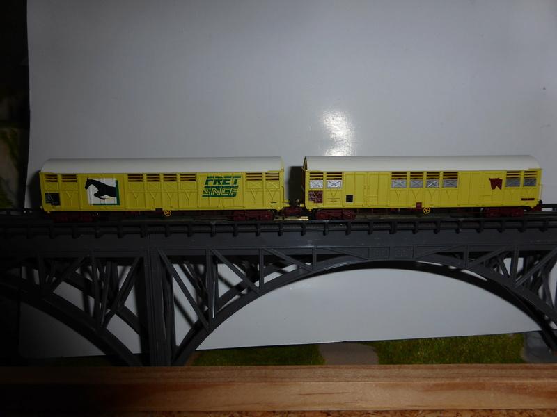 wagons couverts à bogies Gass train 160 - Page 6 P1010920