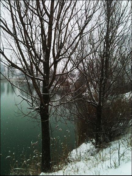 Motiv fotografiranja: Zima i snijeg - Page 3 2014-013