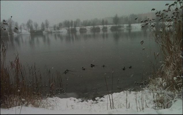 Motiv fotografiranja: Zima i snijeg - Page 3 2014-018
