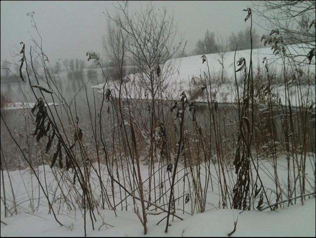 Motiv fotografiranja: Zima i snijeg - Page 3 2014-020