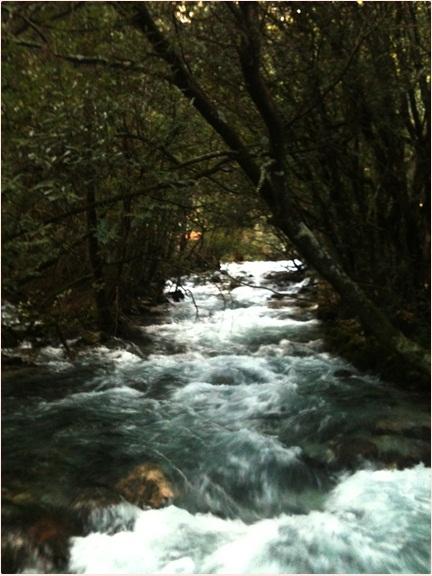 Motiv fotografiranja: rijeka, jezera, slapovi, bara, vodenica, voda u pokretu - Page 2 Img_3218