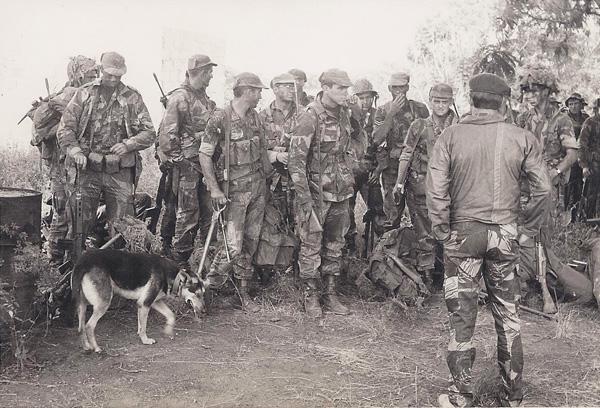 Brushstroke Uniform Army-310
