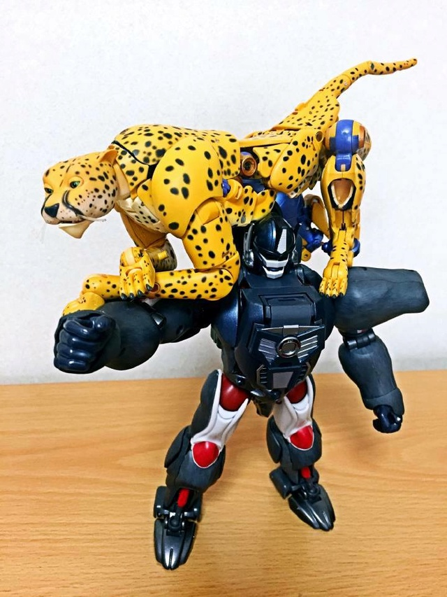 [Masterpiece] MP-34 Cheetor et MP-34S Shadow Panther (Beast Wars) - Page 2 16996010