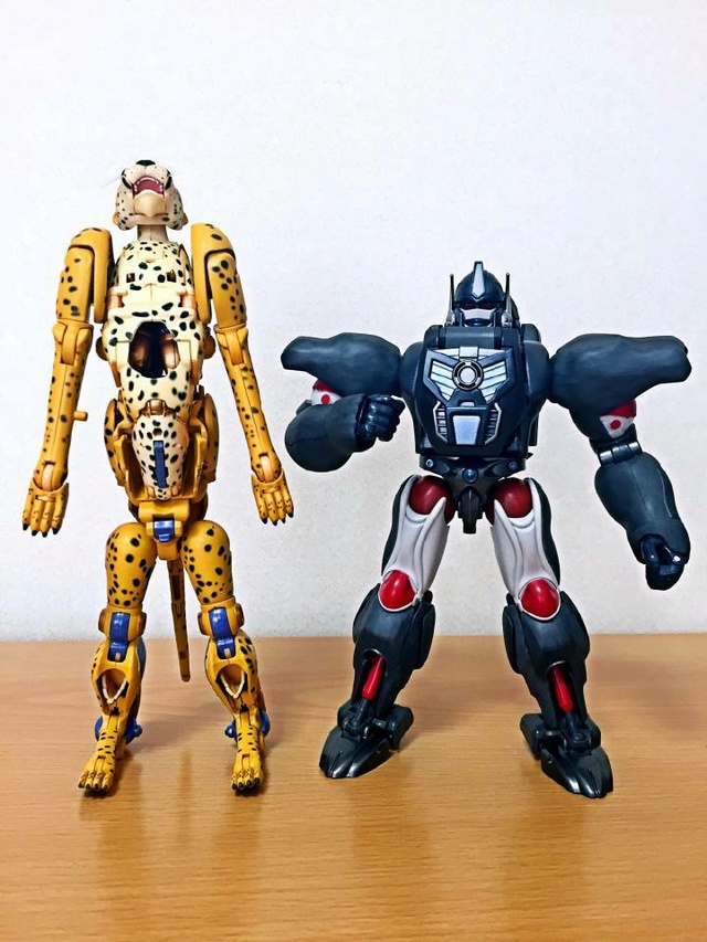 [Masterpiece] MP-34 Cheetor et MP-34S Shadow Panther (Beast Wars) - Page 2 16996110