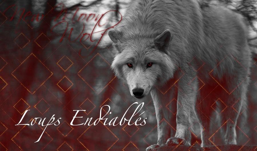 Loups Endiablés