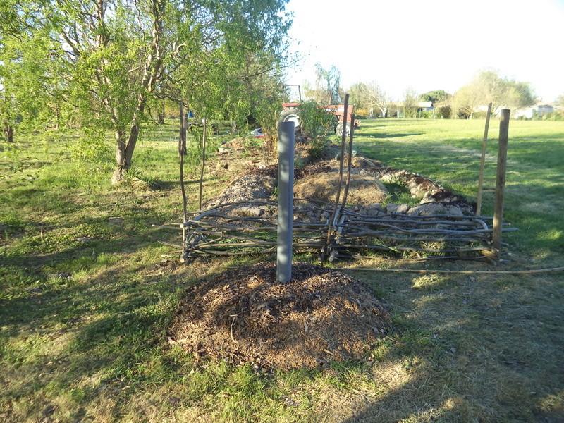 permaculture et autres jeux de jardin Dsc01616