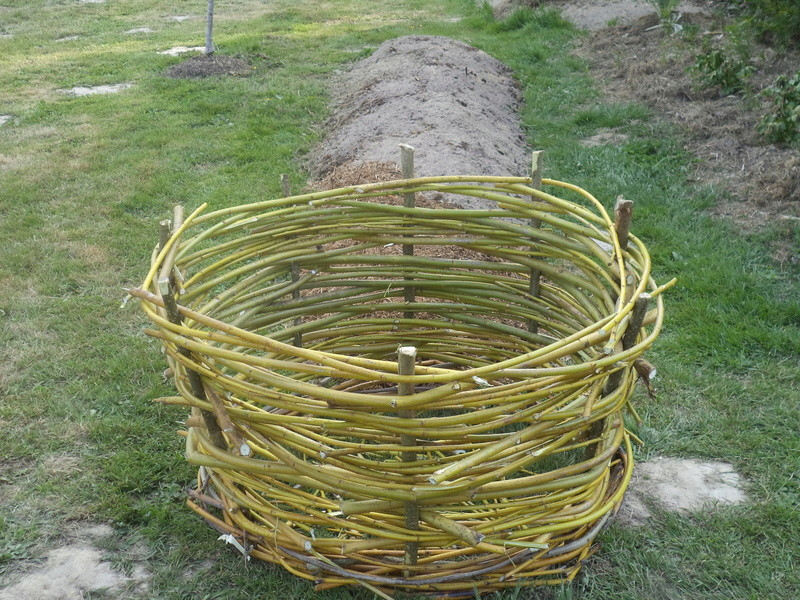 permaculture et autres jeux de jardin Dsc01713