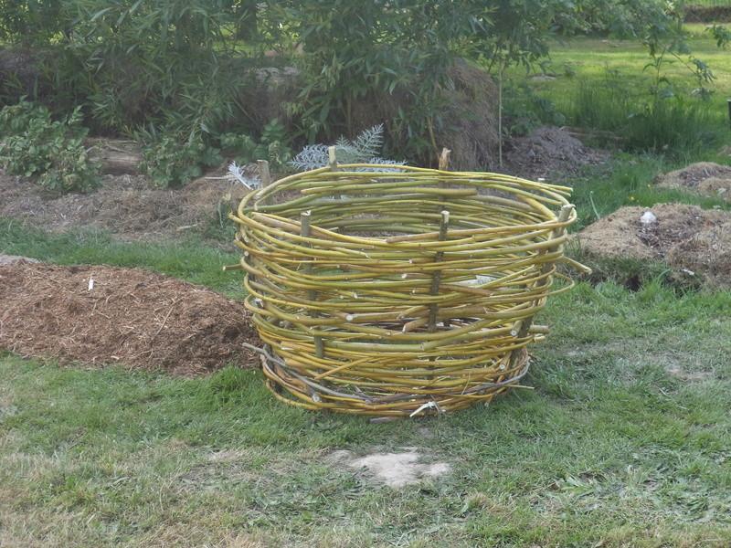 permaculture et autres jeux de jardin Dsc01714