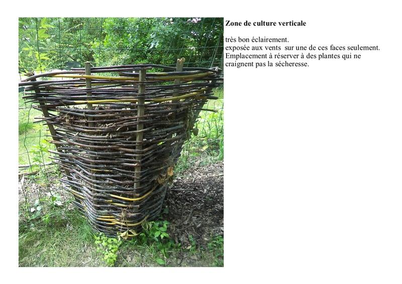 permaculture et autres jeux de jardin - Page 2 Osier10