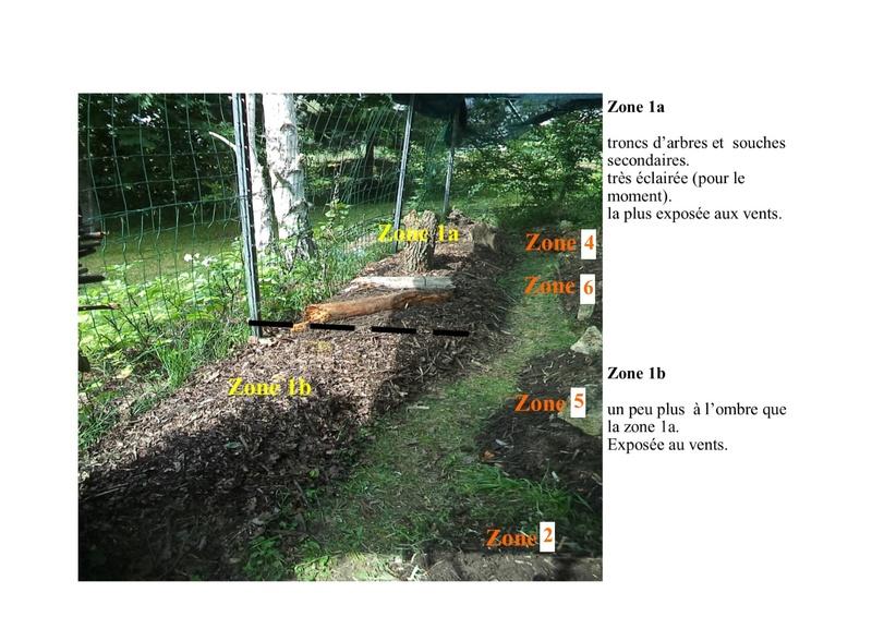 permaculture et autres jeux de jardin - Page 2 Zone_110
