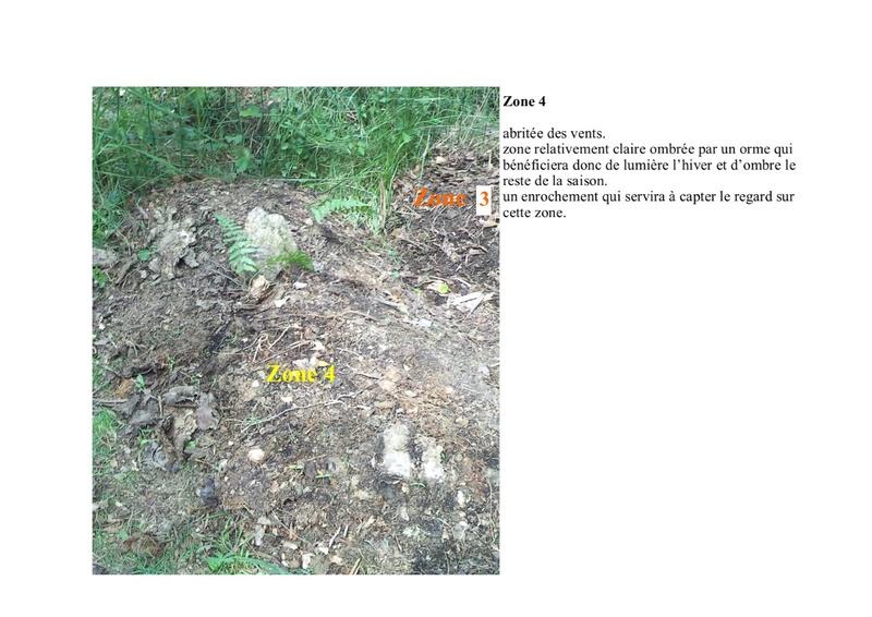 permaculture et autres jeux de jardin - Page 2 Zone_410