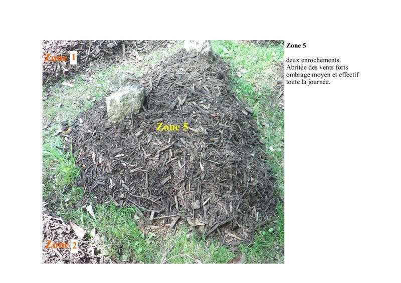 permaculture et autres jeux de jardin - Page 2 Zone_510