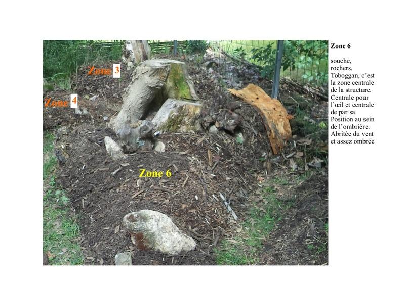 permaculture et autres jeux de jardin - Page 2 Zone_610