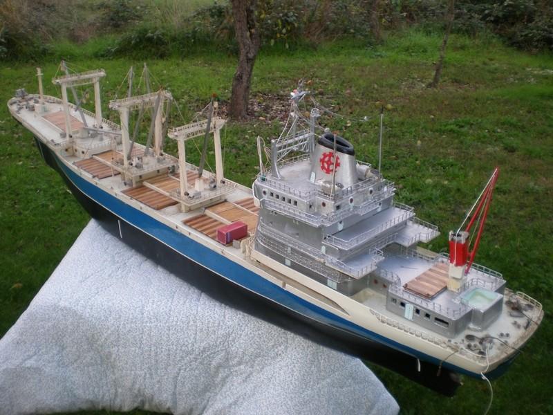 """Le cargo porte-conteneurs """"patrick Vieljeux"""" Pa240013"""