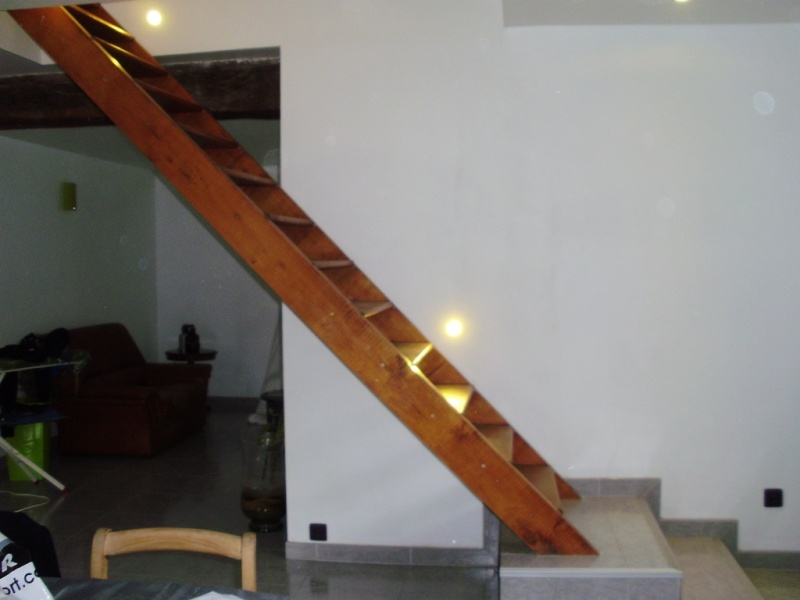 besoin d'idées pour un escalier trop visible Divers10