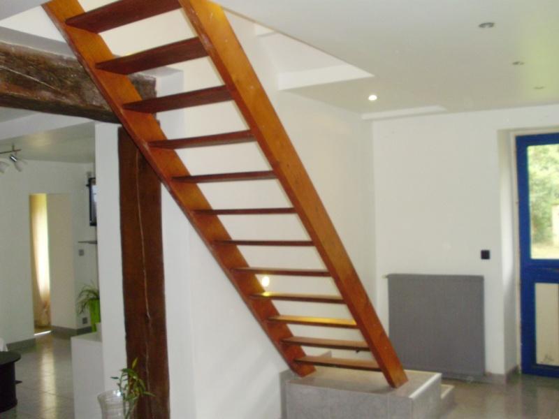 besoin d'idées pour un escalier trop visible Divers12