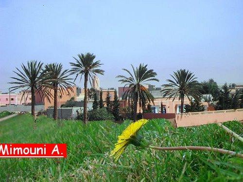 ouled - Ouled Mimoun : un exemple parfait du Maroc en miniature Elkhar10