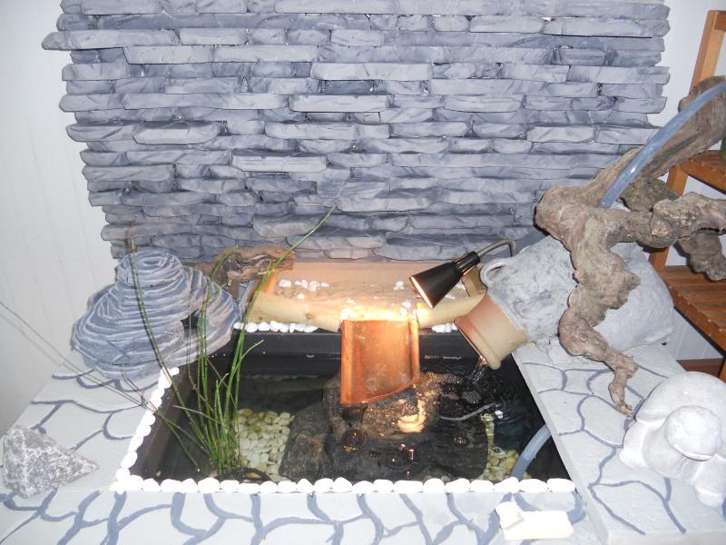 Bonjour à tous voici notre dernière réalisation de notre étang d'intérieur  1611