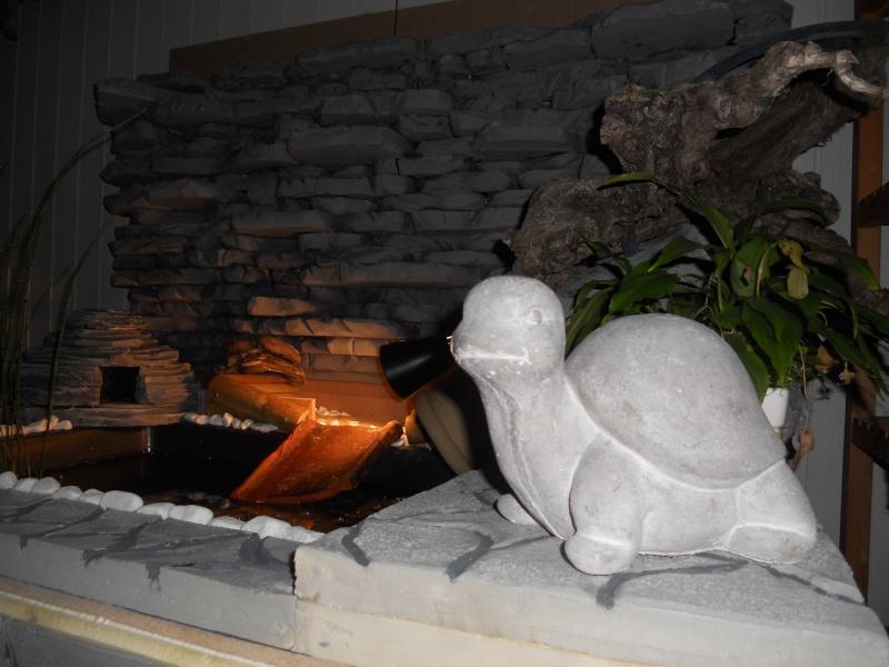 Bonjour à tous voici notre dernière réalisation de notre étang d'intérieur  2010